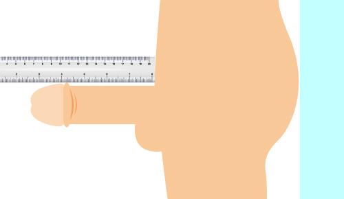長さの測り方