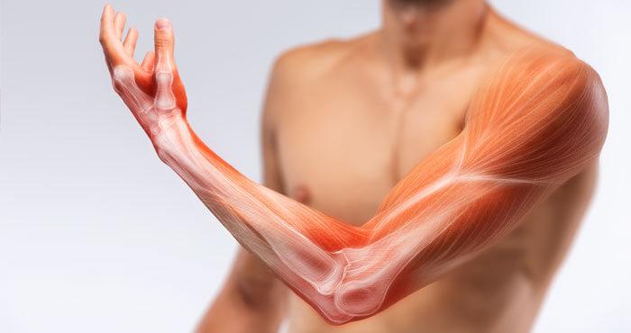 イソロイシン筋肉回復効果